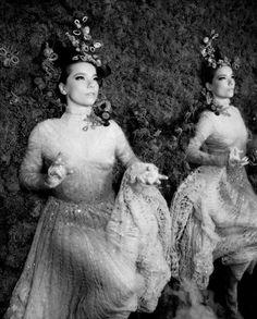 Bjork - Photographers: warren du preez + nick thornton-jones