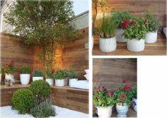 paisagismo de jardim - Pesquisa Google