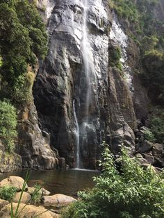 #Bambarakanda #SriLanka #Travel #Hike #Wanderlust #LetsGetGoingSrilanka #BambarakandaFalls