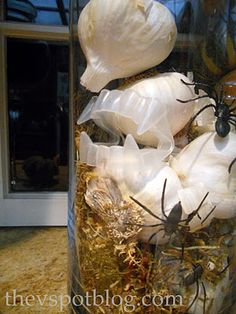 Garlic, moss and vampire fangs in an apothecary jar = easy Halloween decor