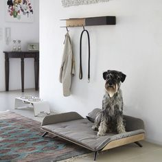 Dog Bed Lets Your Four-Legged Friend Lounge in Style