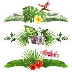 feuille de palmier: 3 frontières tropicaux décoratifs de feuilles et de fleurs
