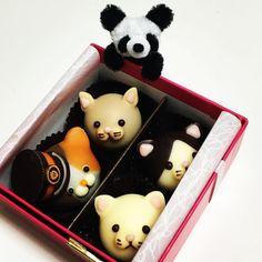 Tama chocolate! たまチョコもろた! #food #foods #chocolate #cat #panda #tama #dessert #seeet #snack #teatime #dolce #チョコレート #たま #パンダ #ネコ #猫 #ねこ #ネコ部 #kawaii #cute