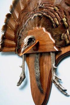 Turkey fan mount with beard, feet, and european style skull. Deer Hunting Decor, Quail Hunting, Hunting Cabin, Hunting Guns, Turkey Hunting, Archery Hunting, Bow Hunting, Hunting Stuff, Coyote Hunting