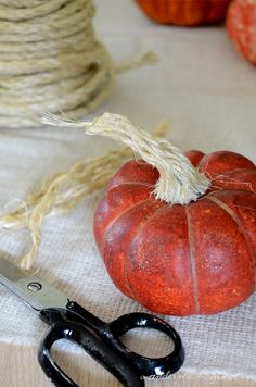 Use this tutorial to turn inexpensive plastic pumpkins into realistic looking decorations using a little paint and sisal rope! anderson and grant