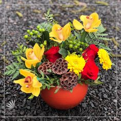 Yellow orchids and red roses sit closely together in this brick colored ceramic vase.