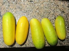 Danish pickle recipe with overripe cucumbers Easy Canning, Home Canning, Canning Recipes, Preserving Cucumbers, Preserving Food, Kfc Fried Chicken Recipe, Yellow Cucumber, Watermelon Pickles, Homemade Pickles