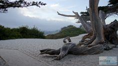 Am Strand von Carmel - Check more at https://www.miles-around.de/nordamerika/usa/kalifornien/highway-no-1-von-san-francisco-nach-marina/,  #17-Miles-Drive #Carmel #HighwayNo.1 #Hotel #Kalifornien #Nationalpark #Natur #Pazifik #Reisebericht #SanFrancisco #USA