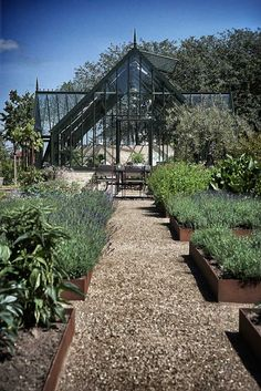 I would love to have this in my backyard herb garden -- photo by Anders Schønnemann   Someday this will be mine!