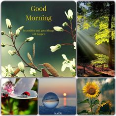 Good morning! - Collage by KaDK's World - https://www.pinterest.com/k5606/kadks-world-of-collages-and-moodboards/