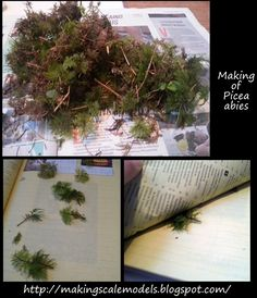Scale models and dioramas: Making of picea abies