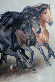 Oil on canvas Carolle Beaudry 36'' x 24'' Majestic Horse, Beautiful Horses, Horse Drawings, Animal Drawings, Horse Tattoo Design, Horse Canvas Painting, Native American Horses, Fire Horse, Clydesdale Horses