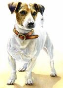 dog portraits on commission - Price list Animal Paintings, Animal Drawings, Dog Drawings, Rain Painting, Realistic Drawings, Jack Russell Terrier, Dog Portraits, Baby Dogs, Animal Quotes