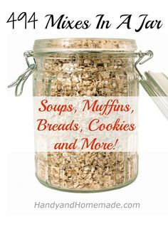 494 Mixes In A Jar: Soups, Muffins, Breads, Cookies And More
