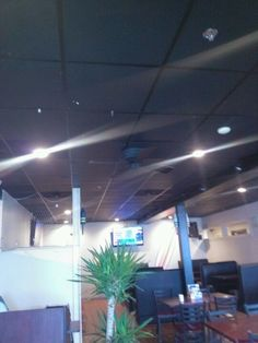 Eating area and ceiling