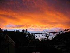 Op een mooie zomeravond, de zon gaat onder en de lucht staat in brand lijkt het wel  (Sunset)