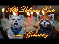 Discover recipes, home ideas, style inspiration and other ideas to try. German English, Happy Birthday, Yellow Roses, Presents, Youtube, Teddy Bear, Christmas Ornaments, Animals, Akkusativ Deutsch
