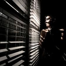 Image result for film noir blinds