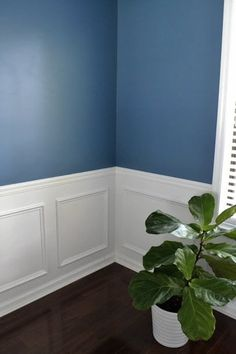 The Best Olympic Paint Colors: 10 Moody Blues