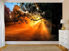Tree Sunset Wall Mural Self-Adhesive Forest Peel & Stick Wallpaper Room Decor