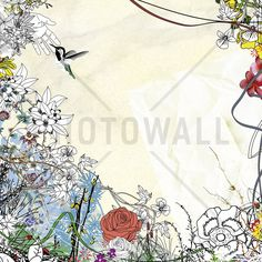 Creating a Bird - Wall Mural & Photo Wallpaper - Photowall
