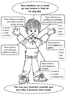 French Teacher, Teaching French, Science Projects For Kids, Activities For Kids, French Classroom, French Resources, French Immersion, English Vocabulary, French Language