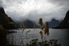 Milford Sound, Nový Zéland