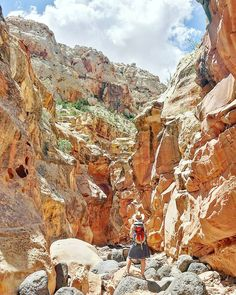 Hiking in Capitol Reef National Park Spring Canyon. This lesser known Utah park is a real gem a place for solitude even on the busy Memorial Day weekend. We met like two other hikers on our 10 mile traverse through the canyon. Thanks @backpackermag for the route recommendation!  #capitolreef #capitolreefnationalpark #findyourpark #nationalpark #kansallispuisto #NPS100 #trailchat #BPmag #nature #luonto #retkeily #retki #hiking #patikointi #vaellus #outdoors #utah #visitutah #canyon #kanjoni…