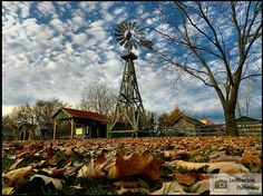 Red Oak II - Route 66 | Flickr - Photo Sharing! Carthage Missouri, Blacksmith Shop, Wind Of Change, Frozen In Time, Red Oak, Town Hall, Ghost Towns, Route 66, Windmill