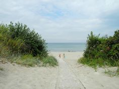 Summer Day at Dronningmølle Beach at the Kattegat Sea on Zealand Island in Denmark