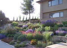 Deseret Nursery Perennial Farm - Perennial Garden Design