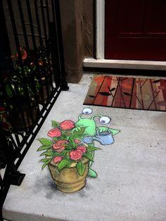 Sluggo Summertime roses