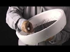 'Stipa Pennata' cuts bridal bouquet base! - YouTube