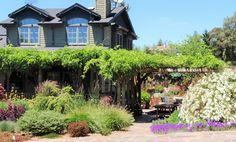 BBY 2010 - Sara's Garden and Ranch