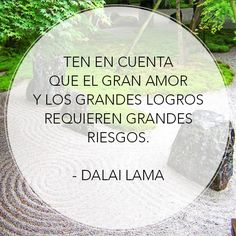 Ten en cuenta que el amor y los grandes logros requieren grandes riesgos. Dalai Lama