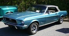 FORD MUSTANGS | classic ford mustangs pictures of classic ford mustangs from car shows ...