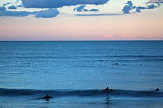 Surfers and dolphins in Kill Devil Hills, NC | Flickr