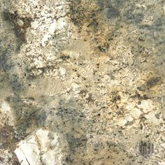 Mombasa - Mombasa Granite from Brazil is a dramatic stone featuring creams, grays, greens and golds. This durable polished slab granite is ideal for interior and exterior projects including flooring, walls, landscape features, countertops, and backsplashes.