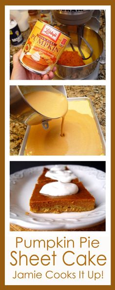 Pumpkin Pie Sheet Cake from Jamie Cooks It Up! #easyfallrecipes, #pumpkinrecipes, #jamiecooksitup