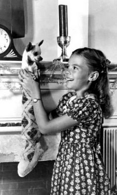 A chihuahua, a very young Natalie Wood, and a Christmas stocking. Natalie Wood, Vintage Hollywood, Classic Hollywood, Viejo Hollywood, Look Back In Anger, Munier, Splendour In The Grass, Chihuahua Love, Hollywood Stars