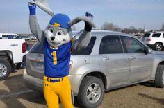 South Dakota State University Jackrabbits   Mascot Monday: South Dakota State Jackrabbits
