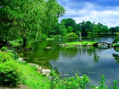 Japanese Garden Grass Serenity Lake Tranquility Forest Pond Park Calm Quiet Sky Bridge Water Nice Nature Reflection Greenery Beautiful Lovely Pretty Green Shore 1080p Wallpaper