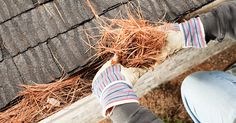 Here are some Tips for Preserving Gutters. https://goo.gl/7qWfJP  But if you need a professional to help you, visit https://goo.gl/KEQXdG and get your free quote now. #gutters #GutterCleaning #RainGutters #GutterSystem #GutterCleaningService