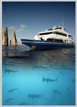 Galapagos Islands Cruises & Tours, Scuba Diving, Cruise Ship, Yacht Charter To Galapagos Islands Galapagos Trip, Galapagos Islands, Island Cruises, Scuba Diving, Ecuador, South America, Places To Visit, Mexico, Bucket