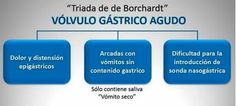 Triada de Bouchardt
