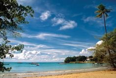 Buccoo Bay Tobago protected by the Buccoo Reef