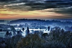 The view of the park from the Alton Estate blocks. The mist was beautiful as the temperatures plummet to below freezing. Beautiful Places In The World, Wonderful Places, Richmond Park, Royal Park, Green Belt, London Life, Countryside, National Parks, Places To Visit