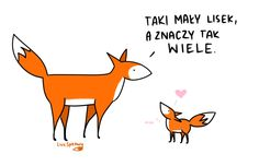 Fox Totem, Pet Fox, Poetry Quotes, Cover Photos, Cute Pictures, Quotations, Lol, Relationship, Wombat