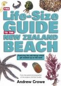 A great photographic guide to the treasures you find living and washed up on New Zealand beaches. Great layout and interesting tidbits of information. It will be loved by all ages. A companion book, Life-Size Guide to the New Zealand Rocky Shore is also worth finding.