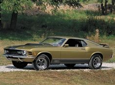 1970 Ford Mustang Pictures: See 516 pics for 1970 Ford Mustang. Browse interior and exterior photos for 1970 Ford Mustang. Ford Mustang Shelby Cobra, 1970 Ford Mustang, Mustang Mach 1, Ford Mustang Fastback, Ford Mustangs, Shelby Gt500, Mustang Boss, Chevy Diesel Trucks, 4x4 Trucks